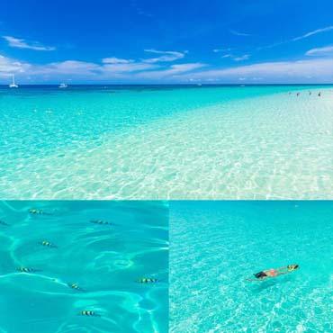 ดำน้ำเกาะไม้ท่อน ดำน้ำตื้นเกาะไม้ท่อน 1